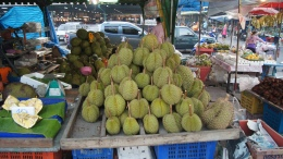 ~durians at morning market thonburi station..