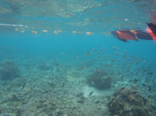 Snorkeling time, Boracay