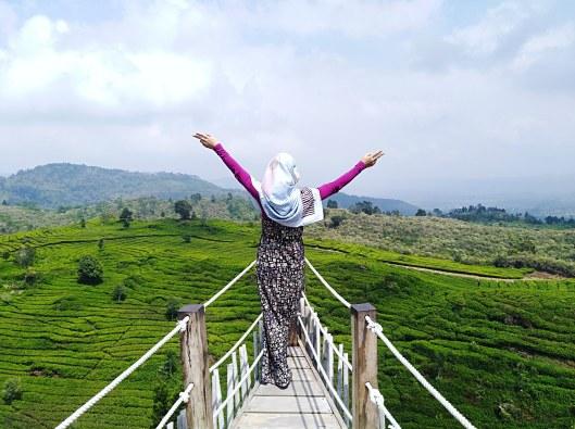 at Teras Bintang, Ciwidey, Bandung