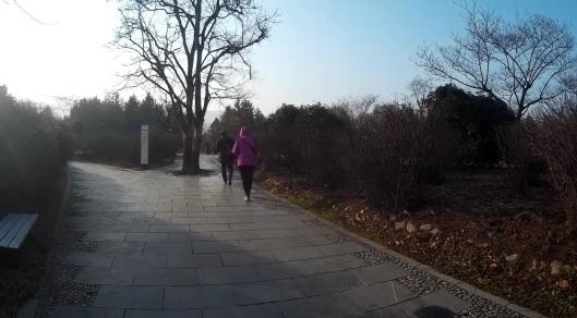 view of the garden at terracotta warrior, xian